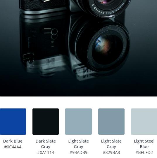 Monochrome Website Ideas