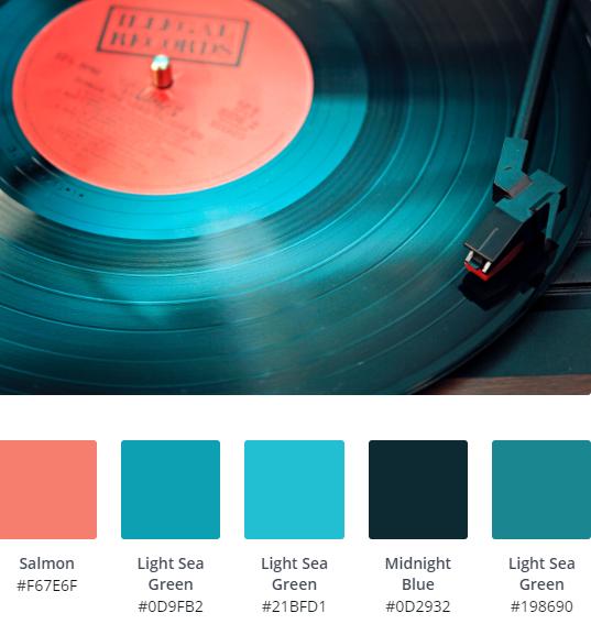 Vinyl Record Website Inspiration