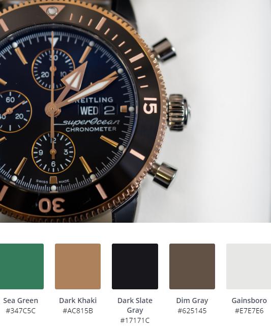 Luxury Website Colour Scheme 1