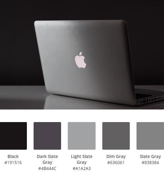 Luxury Website Colour Scheme 12