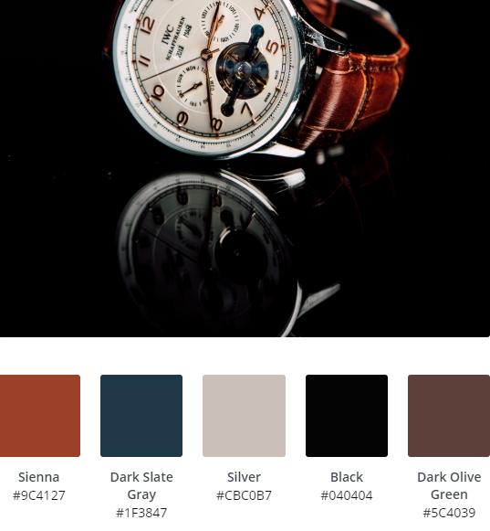 Luxury Website Colour Scheme 3