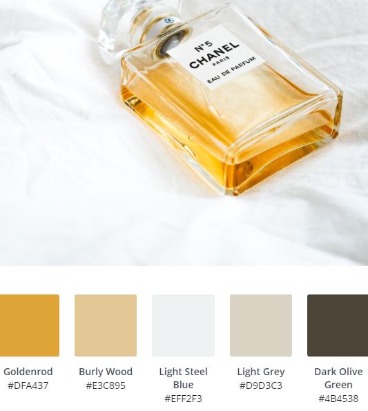 Luxury Website Colour Scheme 13