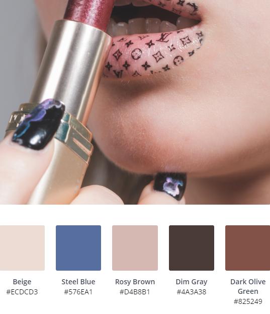 Luxury Website Colour Scheme 11