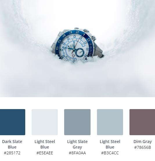 Luxury Website Colour Scheme 6