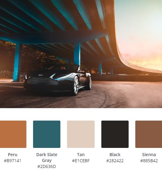 Luxury Website Colour Scheme 9